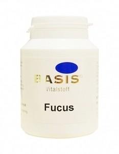 Algenkapseln Fucus